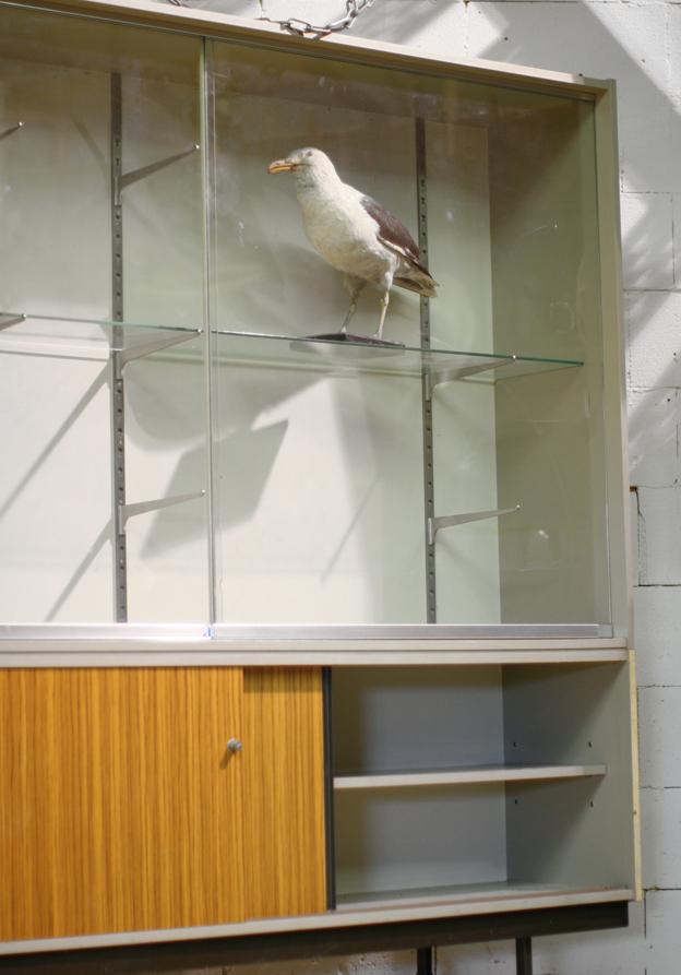 Industrieel vintage xxl vitrine schoolkast apothekerskast dehuiszwaluw - Metaal schorsing en glazen ...