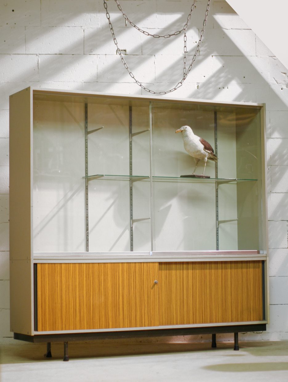 Industrieel Vintage XXL Vitrine – Schoolkast Apothekerskast
