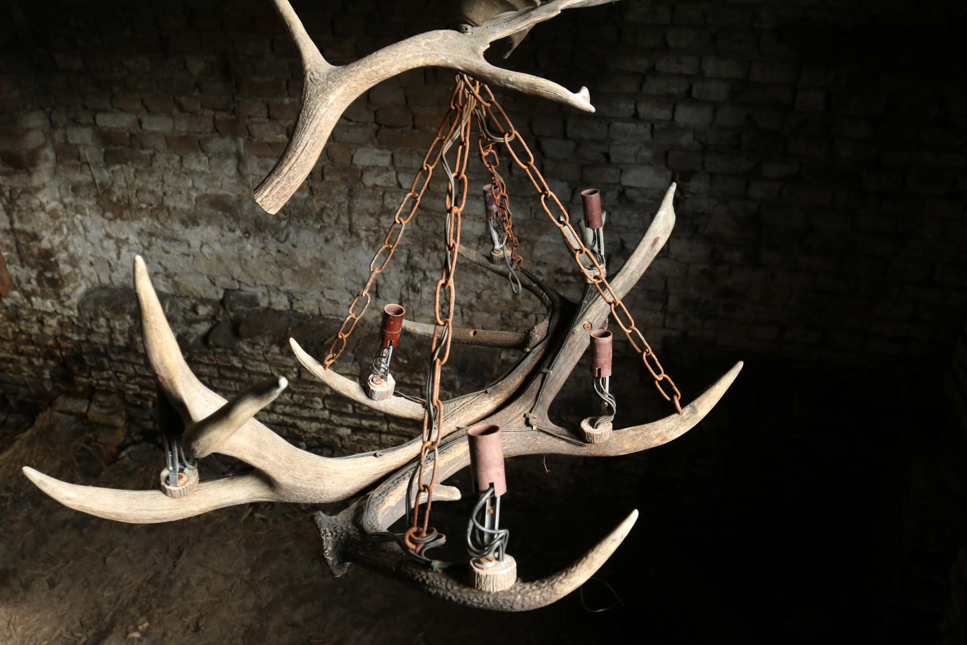 Verlichting dehuiszwaluw for Lamp gewei